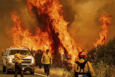 United States Wildfires